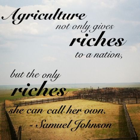 Farming Quotes Adorable Best 576 Farming Quotes Images On Pinterest  Country Life Country . Decorating Inspiration