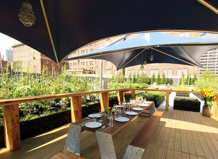 Riverpark Farm Table Restaurant Opens in NYC's Most Urban Farm