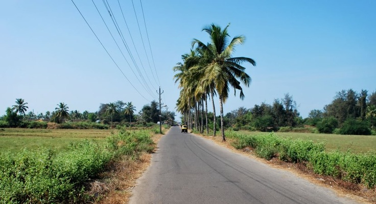 Walk to Benaulim Beach - Vasvaddo Beach Road