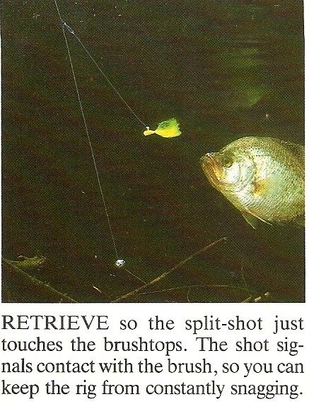 17 best images about lets go fishing on pinterest for Crappie fishing in ga