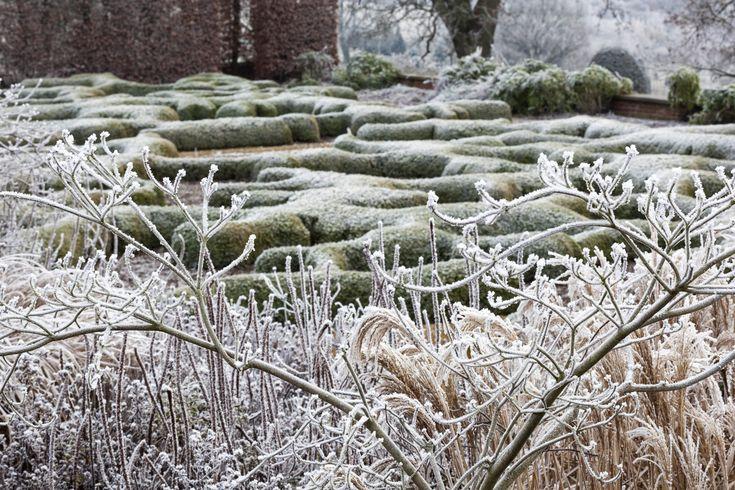 Broughton Grange - Tom Stuart-Smith (winter interest!)