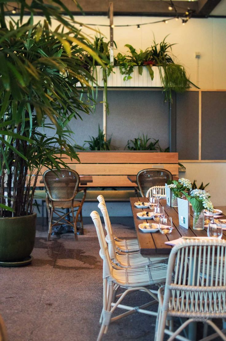 The French West Indies have moved into Potts Point