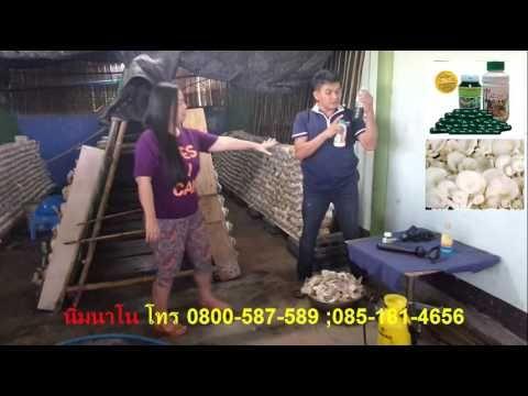 คิดว่าคนไทยค่อนประเทศสนใจที่จะทำ