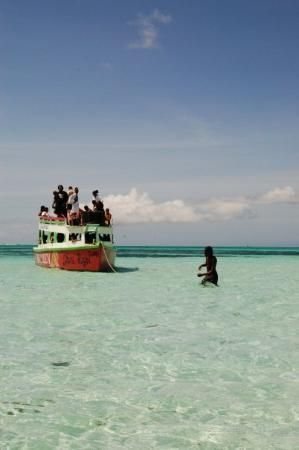 Tobago, The Nylon Pool  A very shallow area in the middle of the ocean, such an amazing experience.  #60days #tobago