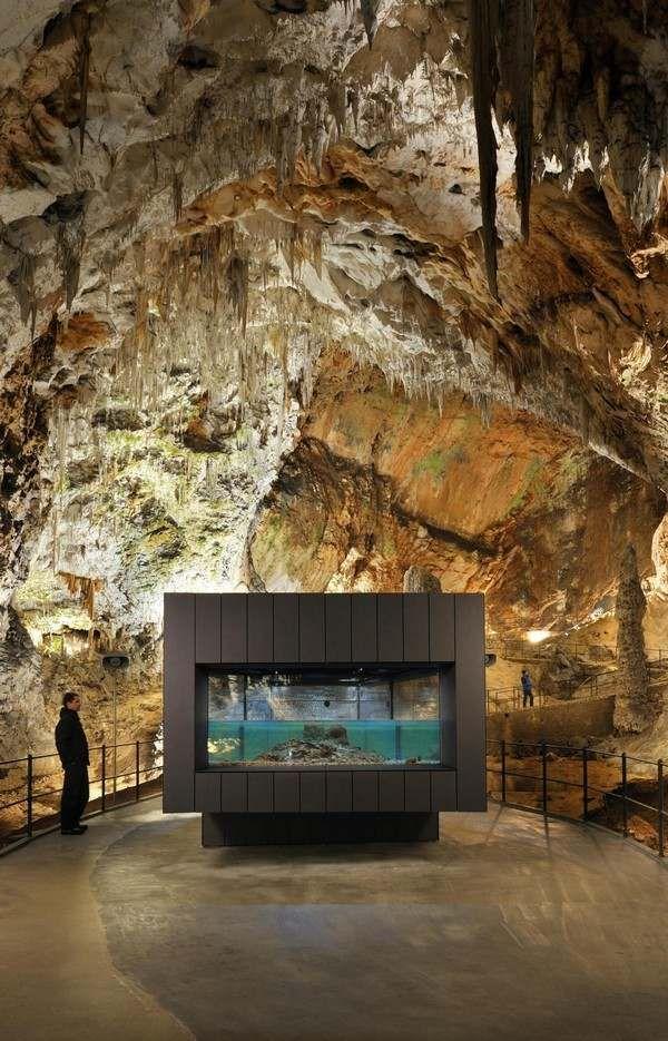 Sehenswürdigkeiten Slowenien Aquarium Höhle