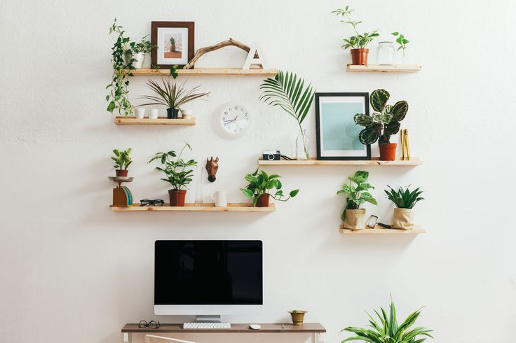 Otimizando sua vida com o Pinterest
