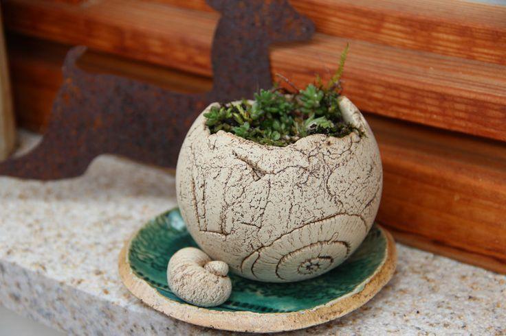 Blumentöpfe - ✿Hauswurzkugel mit Untersetzer & Dekoschnecke - ein Designerstück von ewartha bei DaWanda
