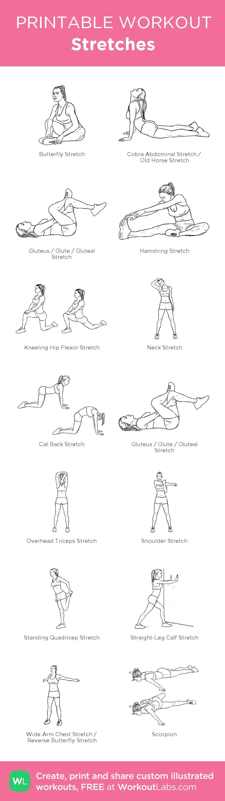 Stretches:my visual workout created at WorkoutLabs.com • Click through to customize and download as a FREE PDF! #customworkout