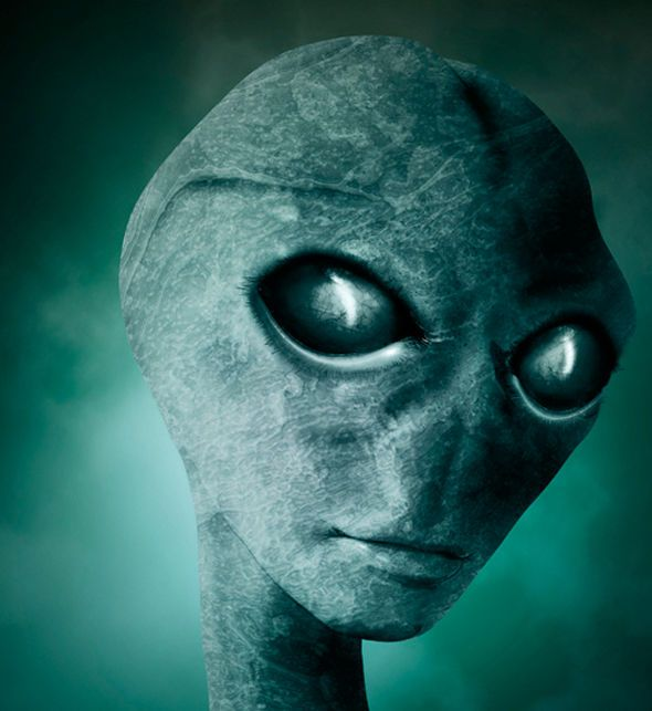 EXCLUSIVE: Navy whistleblower 'saw proof of aliens and UFOs on ...