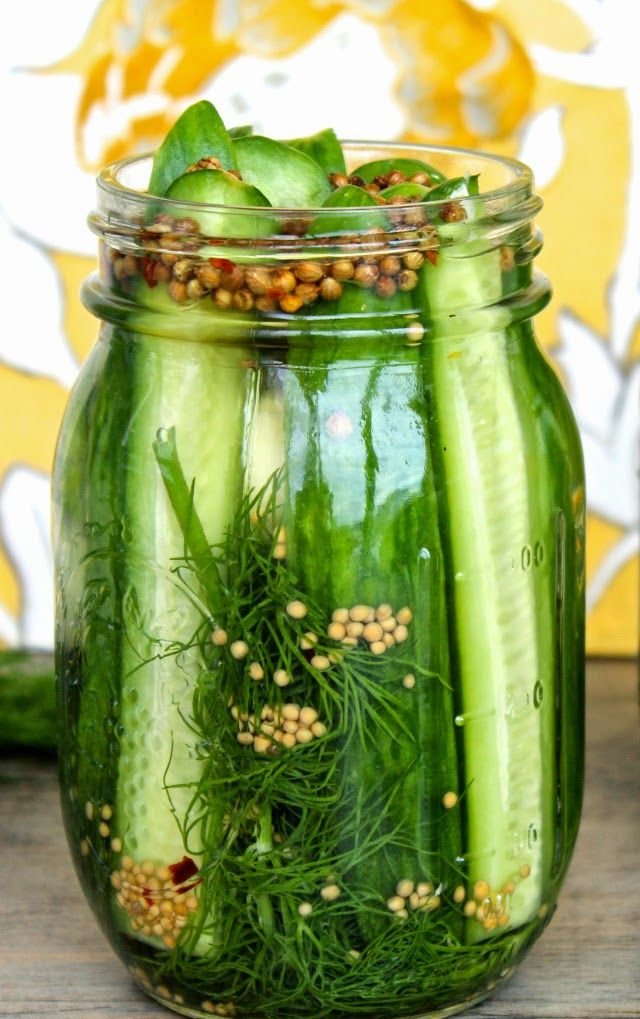 Super Easy Refrigerator Dill Pickles | The Foodie Physician
