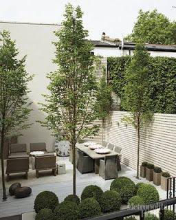 Box balls and narrow deciduous trees