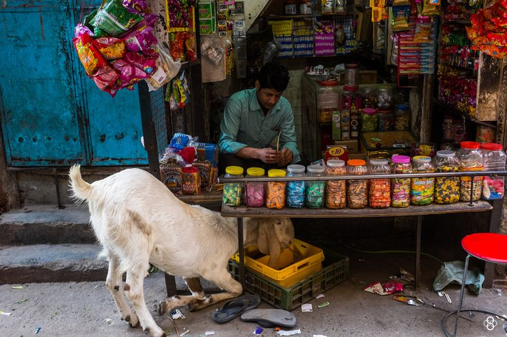 'The Street Drama' by Subodh Shetty on 500px