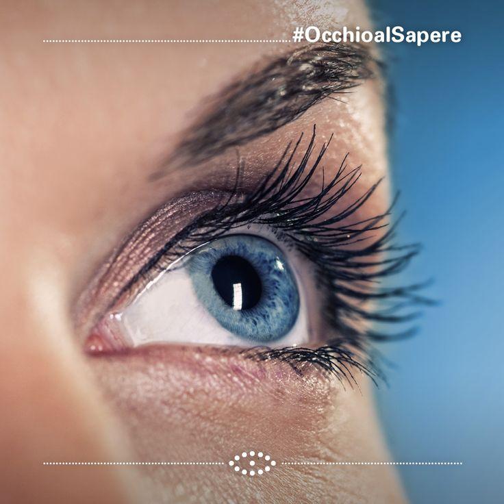 10.000 anni fa, gli occhi di tutti gli esseri umani erano marroni, fino a quando qualcuno sviluppò una mutazione genetica che cambiò il colore delle sue iridi in blu. Questo significa che se hai gli occhi azzuri, devi avere un antenato in comune con tutti gli individui dagli occhi blu che sono in giro per il mondo...   #OcchioAlSapere #salmoiraghievigano #occhio #eye #scienza #science #eye #occhio