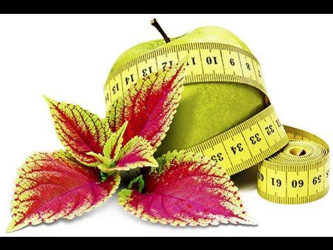 A vegetarian weight loss diet