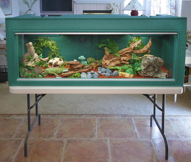 Here, they sell them, but gives some great ideas on reptile enclosures that are nice.