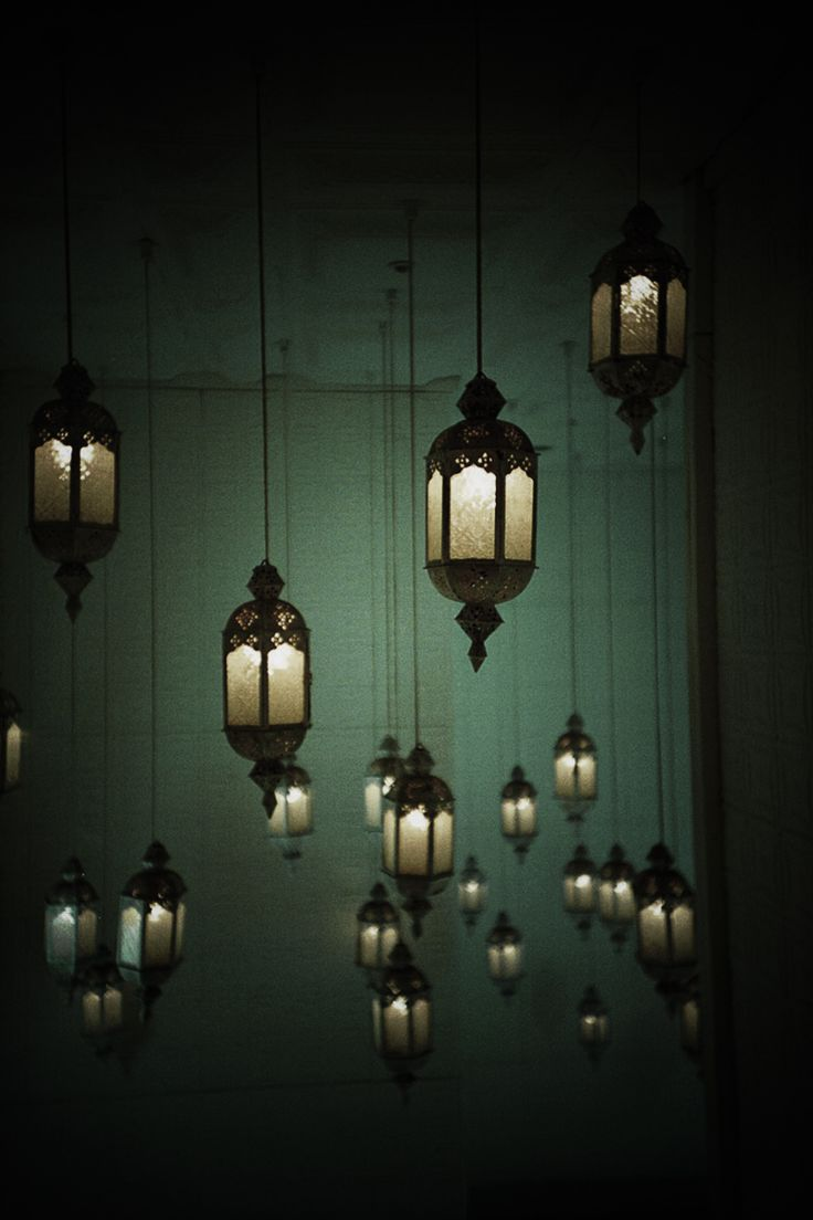 #lantern beauty...