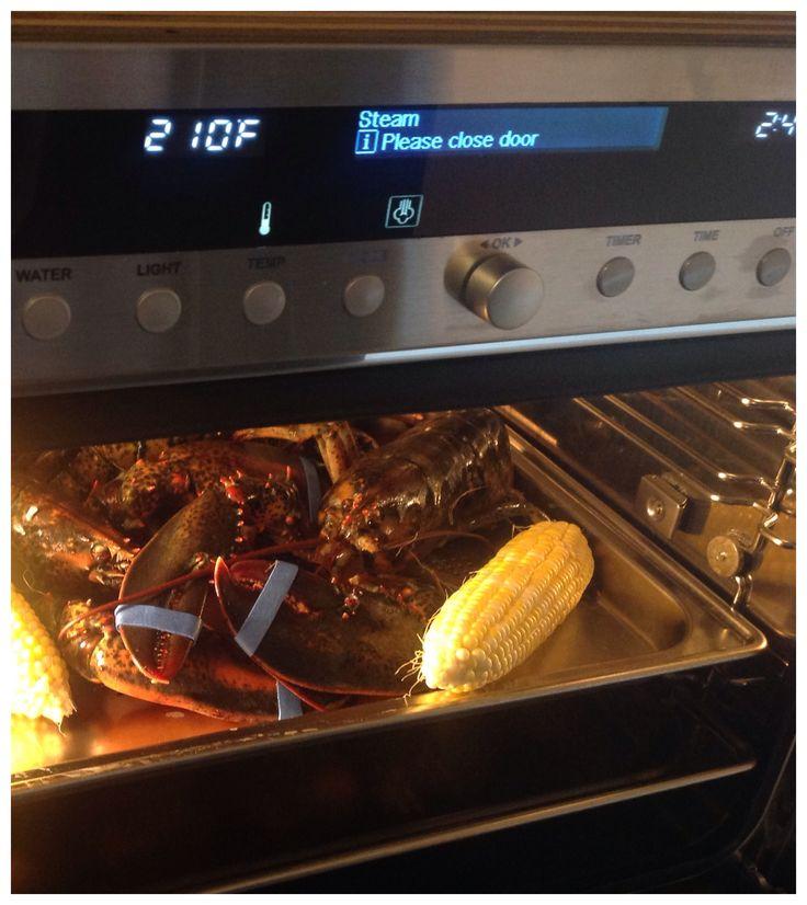 miele combi steam oven recipes pdf