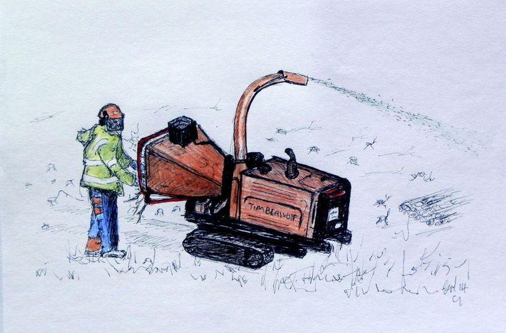 A4 Print of a Timberwolf Arborist felling ,stihl 020T chainsaw,TREE SURGEON  3