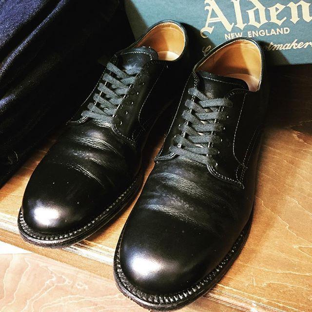 2017/04/13 17:34:57 kindal_hepura ALDEN 1stshoesにいかが!? ALDEN(オールデン)」のMIL SPEC PLAIN TOE 53711 入荷しました。  ミリタリーラストと呼ばれる「379X」ラスト(木型)を使用したカーフのプ レーントゥ  カーフタイプですので、オールデンの1stシューズとしておすすめの1足です。  お店に急げ まずはお電話ください。 06-6365-5522  詳しくはHPをチェックください♪♪ http://www.kind.co.jp/hepura/ □■□■□■□■□■□■□■□■□■□■□■□■□■□■ 11/1よりメンズ専門店へリニューアル致しました。 【お知らせ】 只今、春夏アイテム展開中!! レザー小物も充実です  インスタグラムフォローでその場で8%OFFです □■□■□■□■□■□■□■□■□■□■□■□■□■□■ #ALDEN #オールデン #AldenStyle  #UNDERCOVER #MaisonMartinMargiela #SUPREME #シュプリーム…