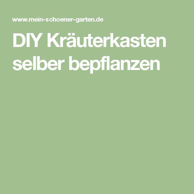 DIY Kräuterkasten selber bepflanzen