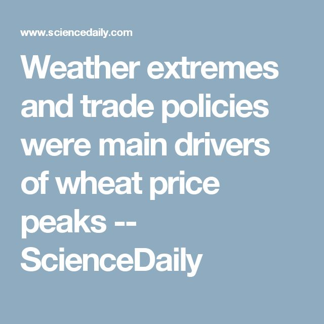 Weather extremes and trade policies were main drivers of wheat price peaks -- ScienceDaily