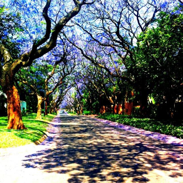 EksamenTyd vir Tukkies Studente University of Pretoria