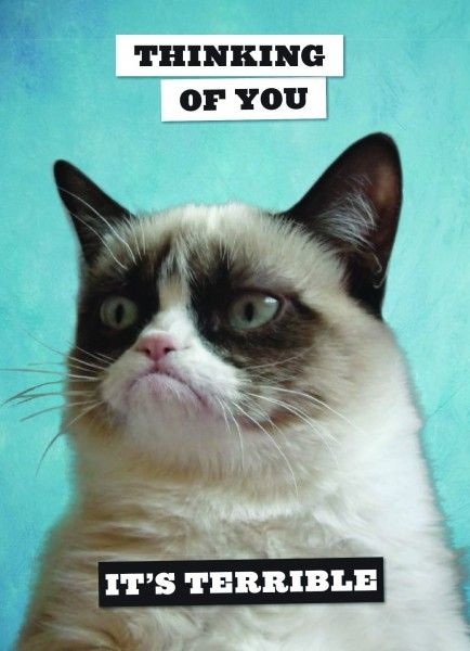 Grumpy Cat Postcard Book - Papiermier