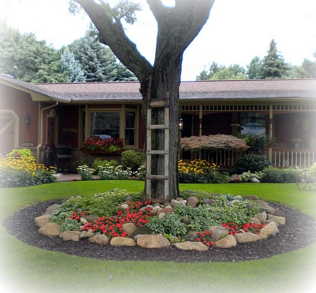 Landscaping Ideas Around Oak Trees : Tree garden art landscaping ideas backyard forward around