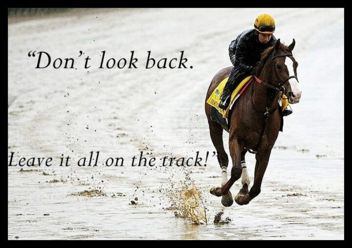 30 Best Famous Horseracing Quotes Images On Pinterest