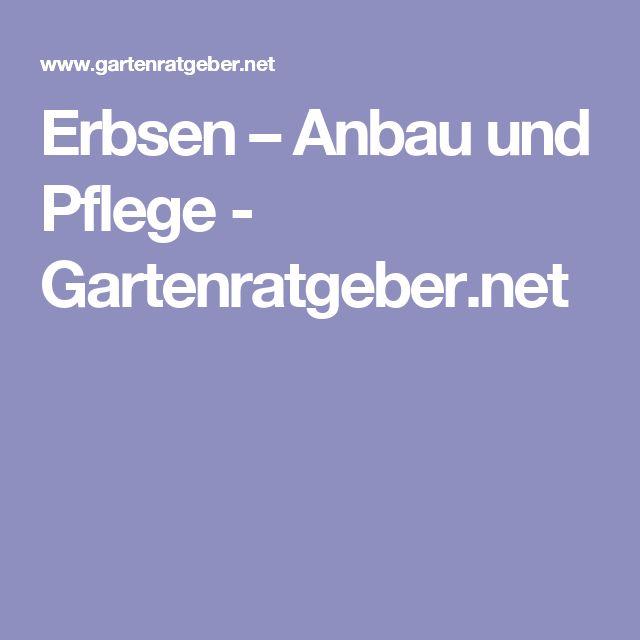 25+ Best Ideas About Erbsenpflanze On Pinterest | Erbsen Pflanzen ... Erbsen Pflanzen Garten Pflege Tipps