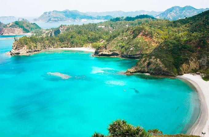 海にダイブでお見送り?心まで温まる小笠原諸島に行くべき4つの理由