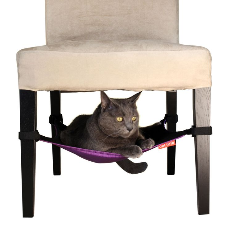 Cat Crib, maybe will keep the cats off of the chair cushions