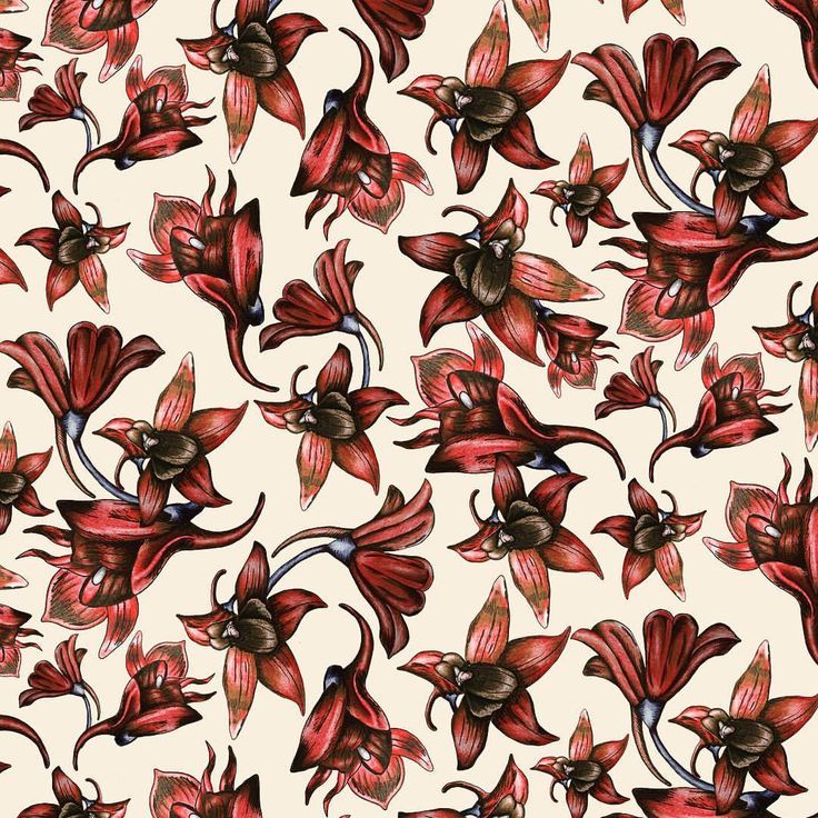 pattern design, wrapping paper, repeat pattern, floral, Eva Lechner