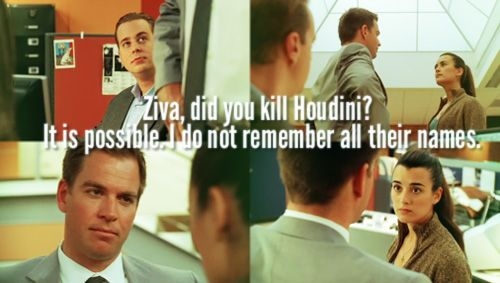"""Ziva, did you kill Houdini?"" - Tony DiNozzo ""It is possible. I do not remember their names."" - Ziva David // NCIS                                                                                                                                                      More"
