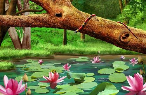 Пруд с лилиями — Бесплатные PSD-Файлы