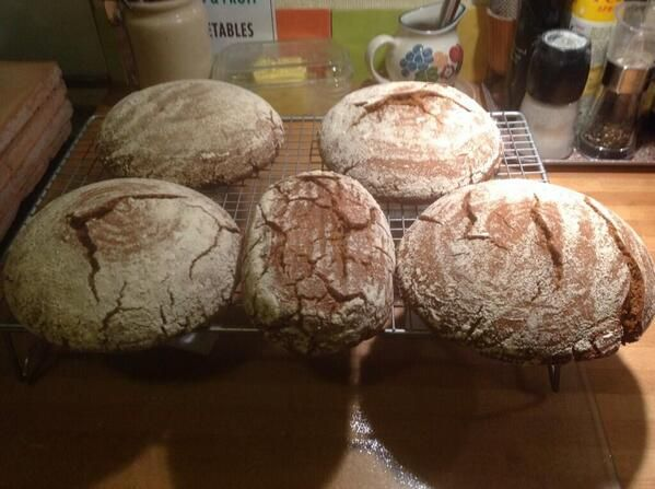 Orkney Beremeal sourdoughs made by Heart and Soulfood of Oban. http://www.heartsoulfood.co.uk/
