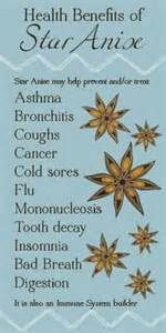 Star Anise: medicinal benefits, culinary uses, how to grow