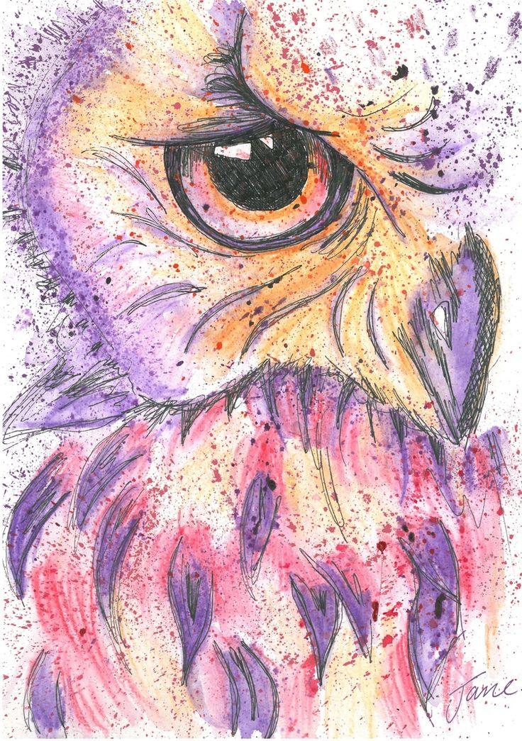 Owl Eye By Jane Burton
