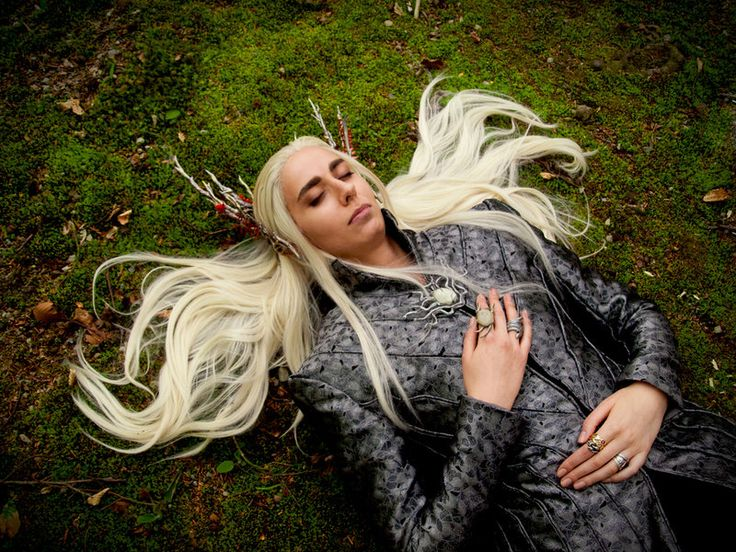 thranduil_cosplay___one_with_the_forest_by_abessinier-d7fdml8.jpg (800×600)
