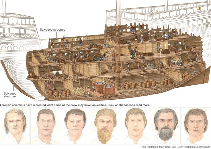 The Mary Rose: A Tudor ship's secrets revealed. Cutaway showing the Mary Rose and forensic scientists, more used to working with murder victims, have recreated the faces of seven of the about 500 men who died when the ship sank in 1545.