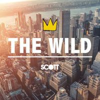 The Wild - Don Scott by Don Scott Music on SoundCloud