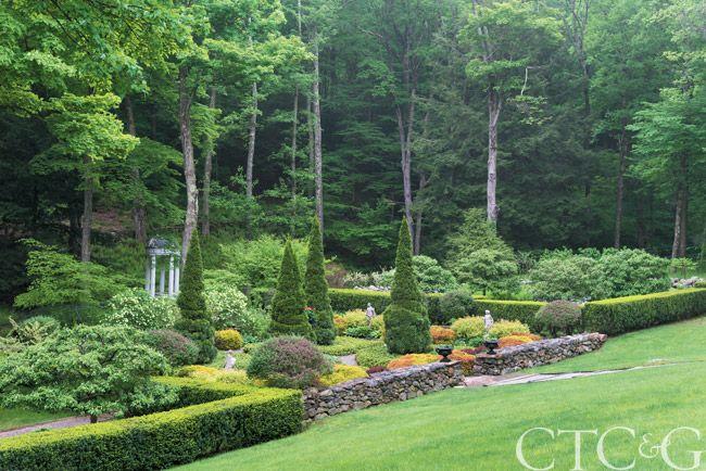 Donna's Blog: Gardening, CTC&G