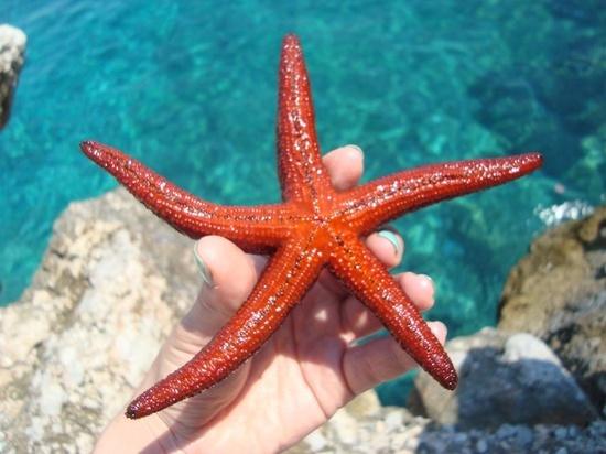 Agistri island, Greece