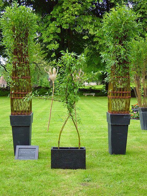les 25 meilleures id es de la cat gorie haie bambou sur pinterest jardiniere pour bambou. Black Bedroom Furniture Sets. Home Design Ideas