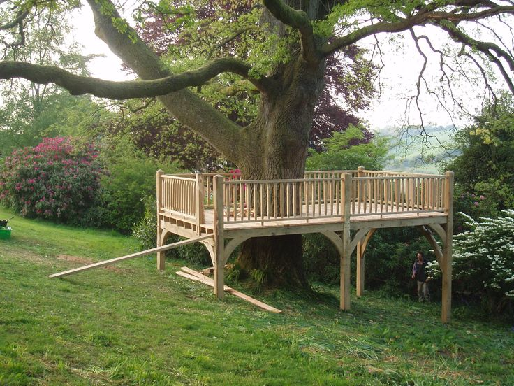 tree platform. Who needs a deck? Add outdoor furniture
