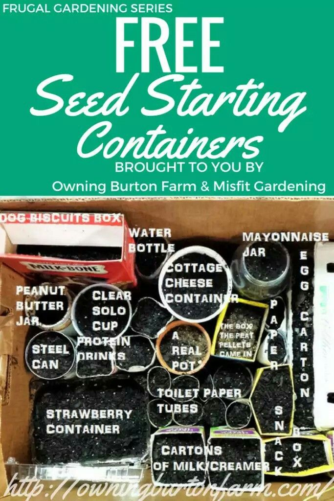 Free seed starting containers!!
