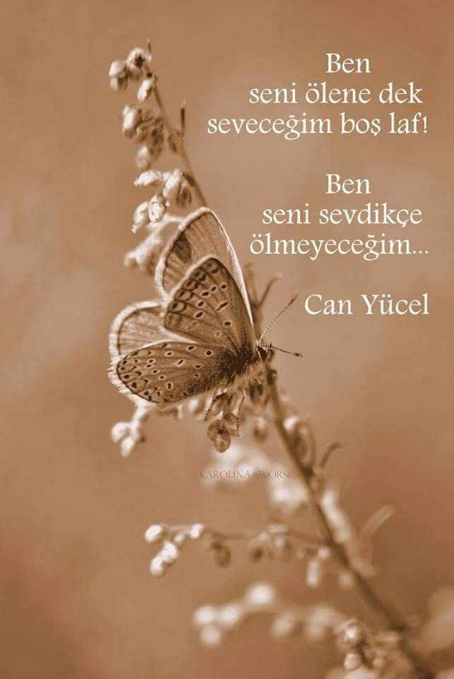 ༺✿ Jasminee™ ✿༻ Can Yücel...