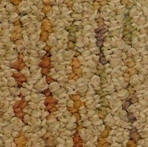 Guardian - Hollytex Commercial - Beaulieu - Carpet - Sandcastle
