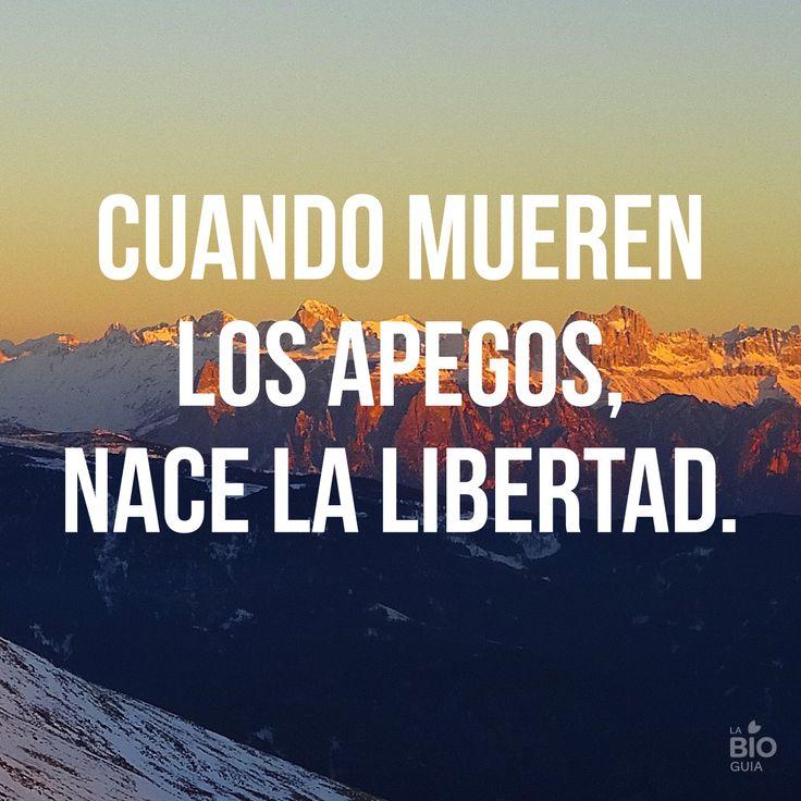 #libertad #vida #quotes #frases