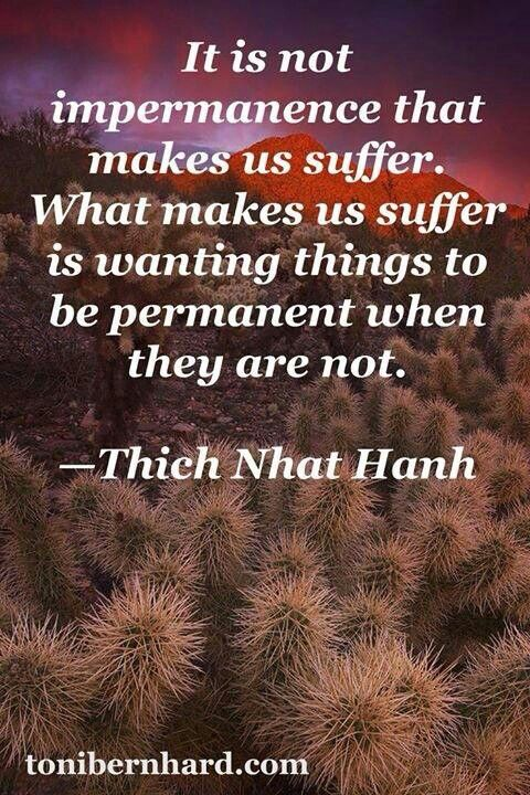 It is not impermanence that makes us suffer... - Thich Nhat Hanh